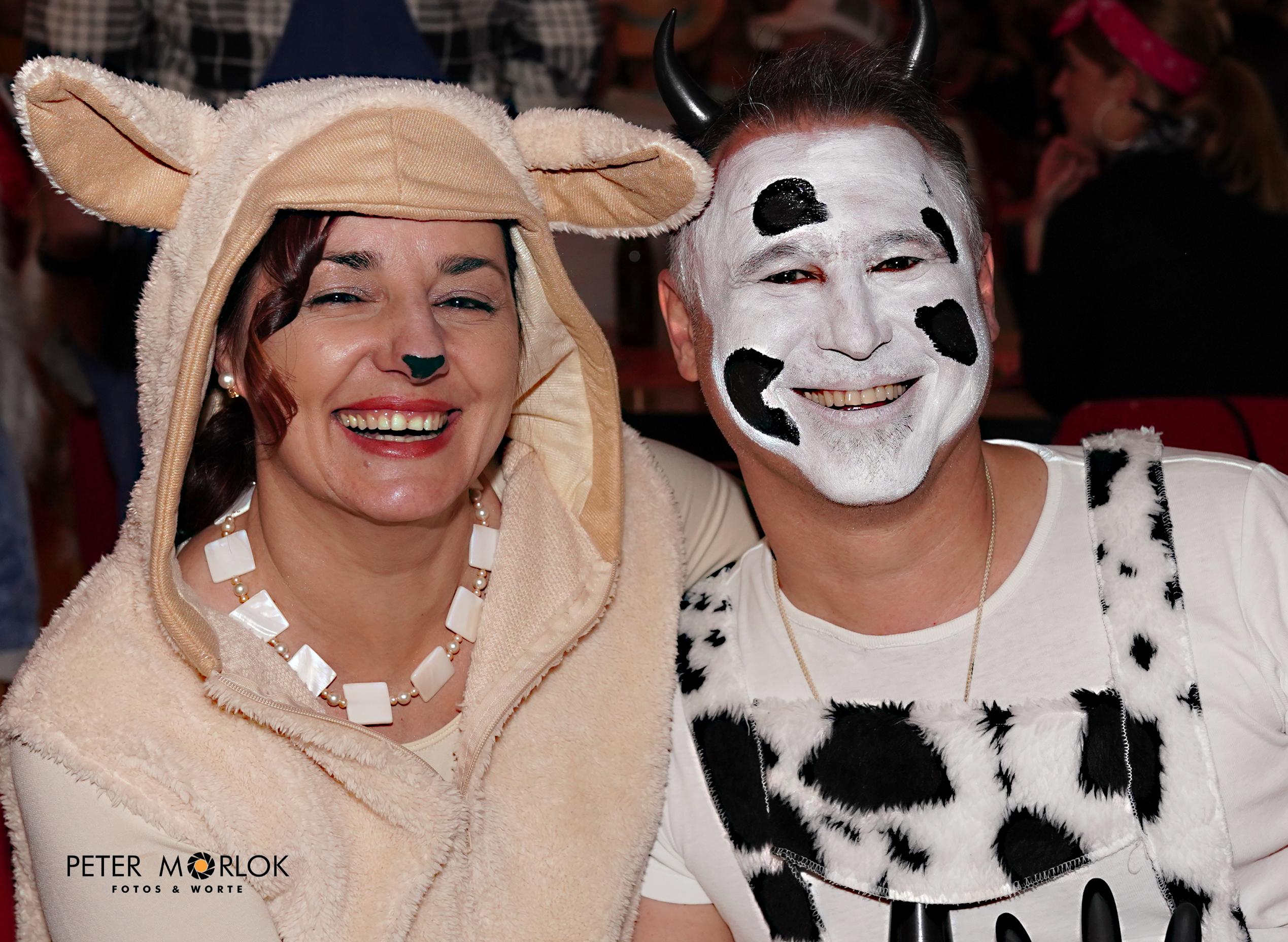 Schaf und Kuh - zusammen auf der Eröffnungsball-Weide